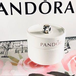 Pandora RETIRED Love Birds Charm with 14k